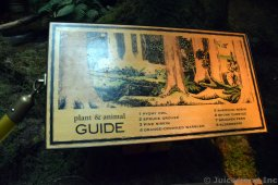 Additional Plants & Animals Guide of Alaska Rain Forest Exhibit