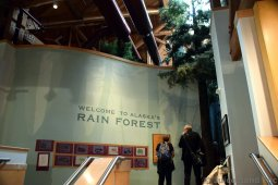 Entrance to Alaska's Rain Forest Exhibit in Ketchikan Tongass National Park Museum